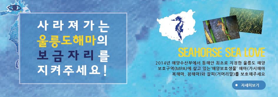 사라져가는 울릉도해마의 보금자리를 지켜주세요! SEAHORSE SEA LOVE 2014년 해양수산부에서 동해안 최초로 지정한 울릉도 해양보호구역(MPA)에 살고 있는 '해양보호생물' 해마(가시해마,복해마,점해마)와 잘피(거머리말)를 보호해주세요. 자세히보기