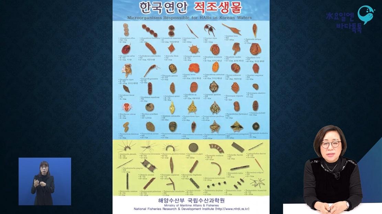 대구 7회 본강연